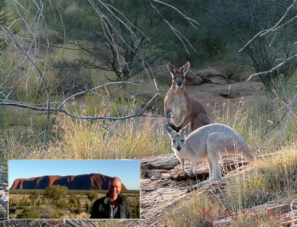 ik-en-kangoeroes