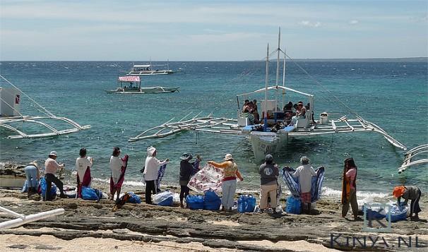Wachtend op de toeristen (Apo Island, de Filipijnen)